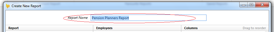 Report Name